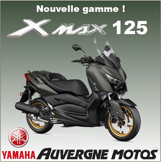 display-xmax125.jpg